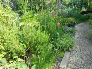 Gardening Gloucestershire